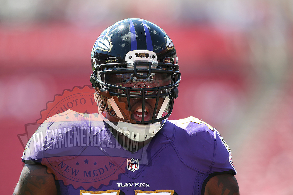 TAMPA, FL - OCTOBER 12:  Outside linebacker Terrell Suggs #55 of the Baltimore Ravens is seen during warmups of an NFL football game at Raymond James Stadium on October 12, 2014 in Tampa, Florida. (Photo by Alex Menendez/Getty Images) *** Local Caption *** Terrell Suggs