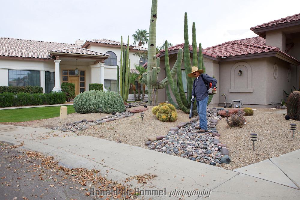 Rock gardens are increasing in popularity in water scarce desert cities like Phoenix, AZ. Even in a neighbourhood like Arrowhead on the Northwest side of Phoenix where every house has a back yard facing the Arrowhead Lakes.