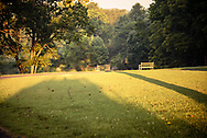 A warm morning light shines on two park benches in Meadowlark Botanical Gardens.