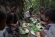 Maniq children play a game using leaves and balls of mud in their temporary settlement. Very few Maniq children go to school so their spend their days playing in the forest.<br /> <br /> Evidence suggests that the Maniq, a Negrito tribe of hunters and gatherers, have inhabited the Malay Peninsula for around 25,000 years. Today a population of approximately 350 maniq remain, marooned on a forest covered mountain range in Southern Thailand. Whilst some have left their traditional life forming small villages, the majority still live the way they have for millennia, moving around the forest following food sources. <br /> <br /> Quiet and reclusive they are little known even in Thailand itself but due to rapid deforestation they are finding it harder to survive on the forest alone and are slowly being forced to move to its peripheries closer to Thai communities.