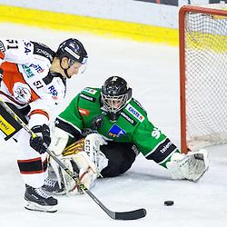 20150123: SLO, Ice Hockey - EBEL League 2014/15, HDD Telemach Olimpija vs HC Orli Znojmo