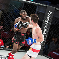Lion Fight Championship 12