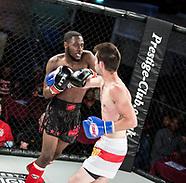 Lion Fight Championship 12