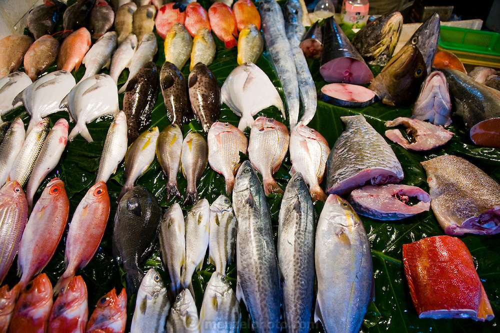 Different species of fish are displayed at market in Taipei.