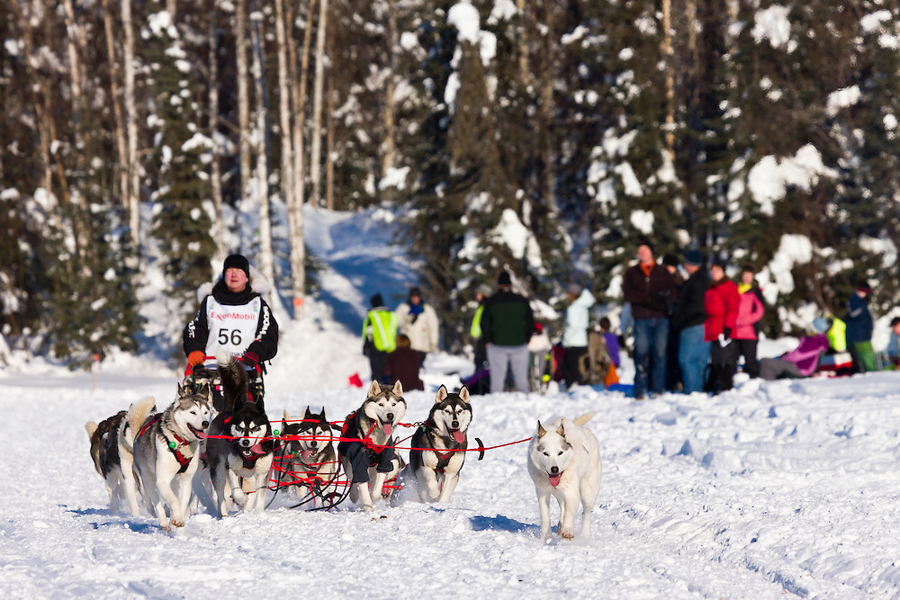 Musher Karen Ramstead competing in the 40th Iditarod Trail Sled Dog Race on Long Lake after leaving the Willow Lake area at the restart in Southcentral Alaska. Afternoon. Winter.