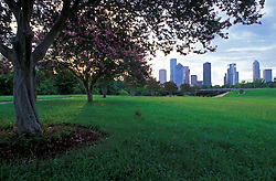 Stock photo of the view of the Houston skyline from under a tree in Buffalo Bayou Park