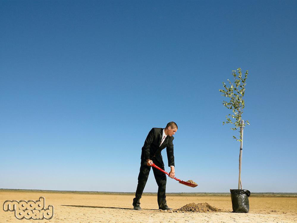 Businessman planting tree in desert
