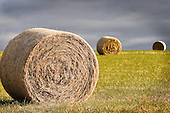 Towns & Rural - stock images