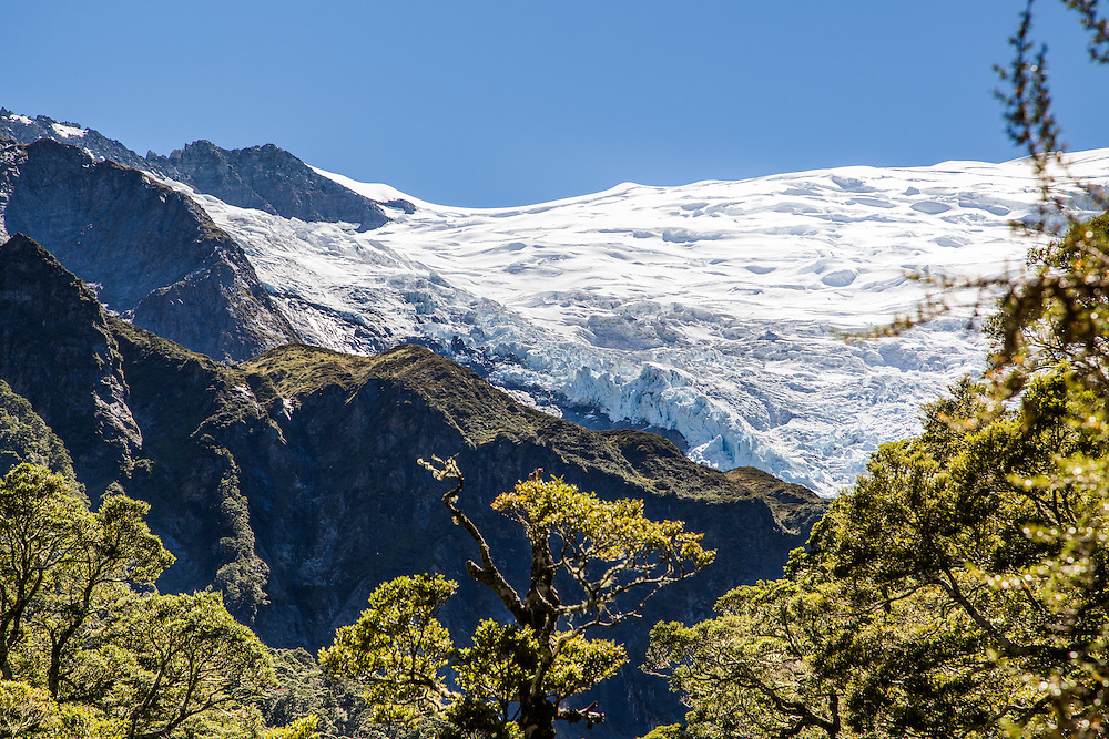 First Glimpse of the Rob Roy Glacier from the hiking trail.