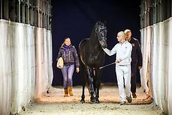 632 - Giovanny TC<br /> KWPN Stallion Selection - 's Hertogenbosch 2014<br /> © Dirk Caremans