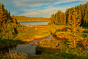 Marge Lake at sunset. Boreal forest.<br />