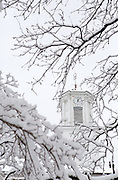 The clock tower on Ohio University's Cutler Hall appears through snow-laden branches on Feb. 3, 2014, when classes were canceled due to inclement winter weather. Photo by Lauren Pond