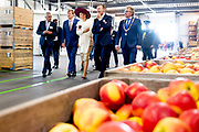 Koning Willem-Alexander en koningin Maxima tijdens een rondleiding bij Appelpakstation FruitMasters als onderdeel van het streekbezoek aan de Betuwe.<br /> <br /> King Willem-Alexander and Queen Maxima during a tour at Apple Pack Station FruitMasters as part of the regional visit to the Betuwe.