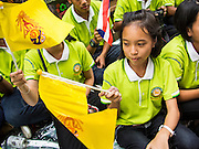 01 AUGUST 2013 - BANGKOK, THAILAND: Thai students wave the yellow flag of the monarchy in front of Siriraj Hospital Thursday. Bhumibol Adulyadej, the King of Thailand, left the hospital Thursday. The King, 85, was discharged from Bangkok's Siriraj Hospital, where he has lived since September 2009. He traveled to his residence in the seaside town of Hua Hin, about two hours drive south of Bangkok, with his wife, 80-year-old Queen Sirikit, who has also been treated in the hospital for a year.      PHOTO BY JACK KURTZ