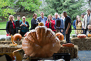 New York Botanical Gardens Halloween Pumpkin carving festival in The Bronx New York City