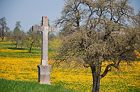 Switzerland. Springtime. A typical Swiss Mitteland spring  landscape with a cross.