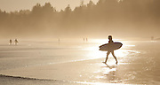 Surfing at sunset on the Pacific Rim; Long Beach near Tofino, British Columbia; west coast of Vancouver Island