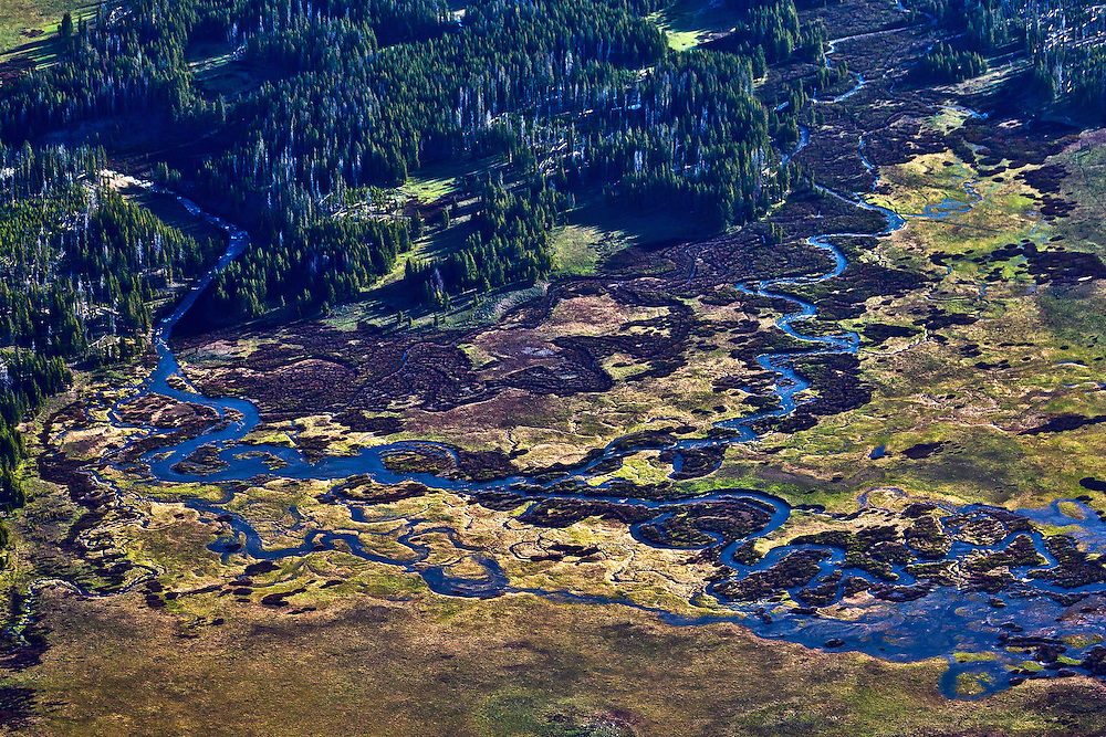 Aerial view of the headwaters of the Snake River in Yellowstone National Park in springtime with many littel streams combining in a high elevation pan of a wetlands before they merge to create the beginning of the river