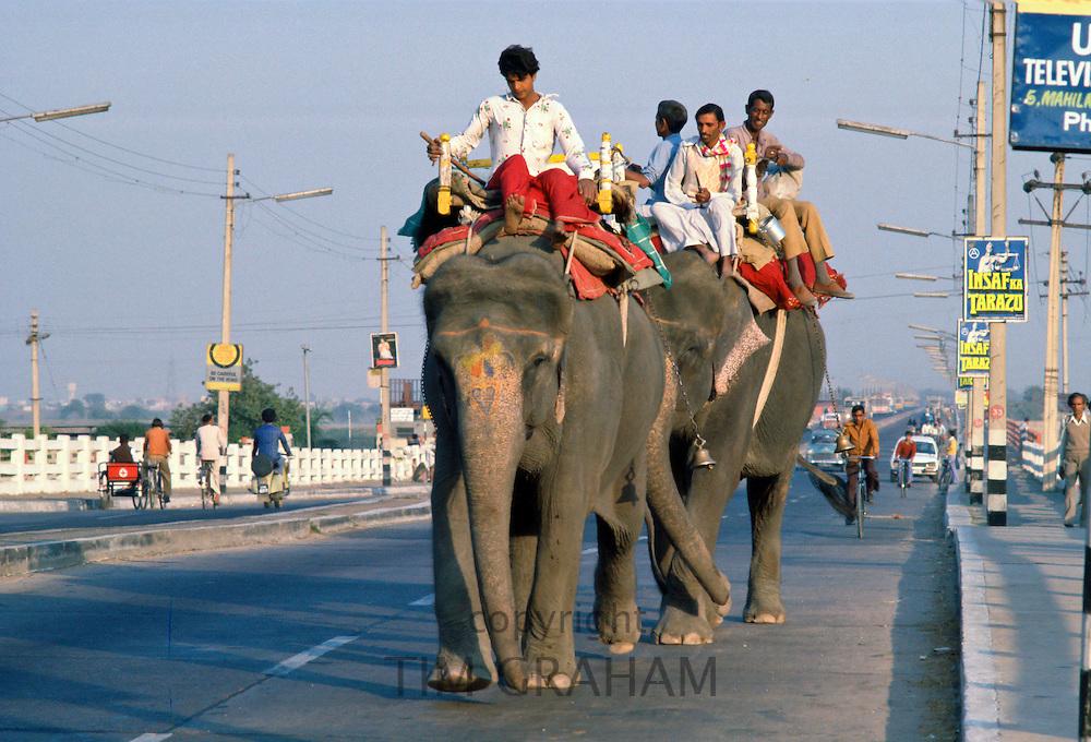 Riding Elephants, Delhi, India