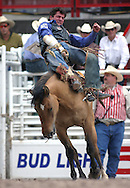 Bronc Rider, 2004 Cheyenne Frontier Days Rodeo, Cheyenne WY, July 2004