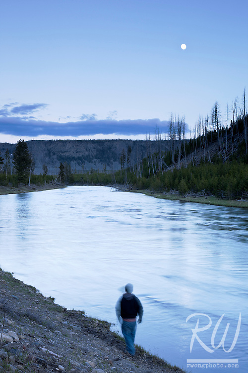 Hiker Walking Along Madison River at Dusk, Yellowstone National Park, Wyoming