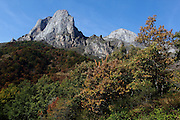 Autumn leaves below the Valdecor mountain in the south-eastern part of the Picos de Europa National Park in northern Spain