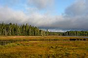 Bass Harbor Marsh, Mount Desert Island, Maine