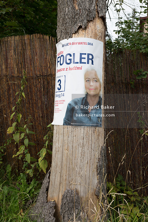 "A landscape of an election poster for the Polish political candidate Marta Fogler of the Citizens' Coalition, on a residential street's tree, on 16th September 2019, in Zakopane, Malopolska, Poland. Poland's parliamentary elections will be held on 13 October 2019 when all 460 members of the Sejm and 100 senators will be elected. The Sejm of the Republic of Poland is the lower house of the Polish parliament. It consists of 460 deputies elected by universal ballot and is presided over by a speaker called the ""Marshal of the Sejm of the Republic of Poland"""