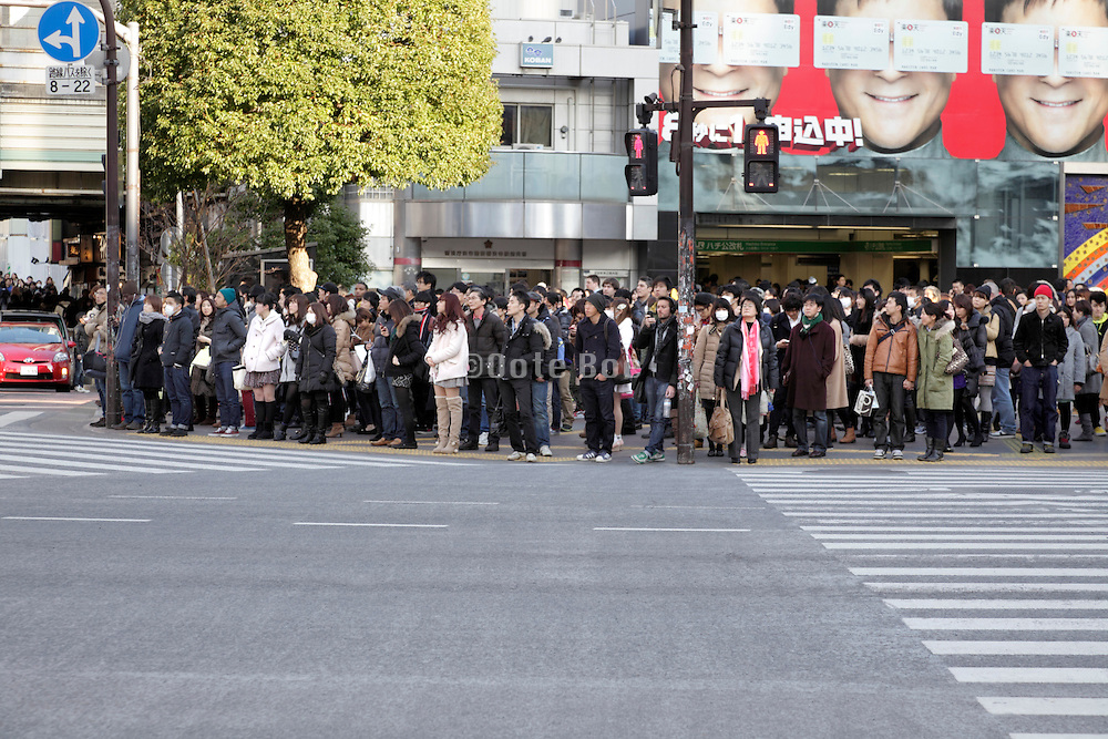 crowd waiting to cross at the famous Shibuya pedestrian crossing Tokyo Japan