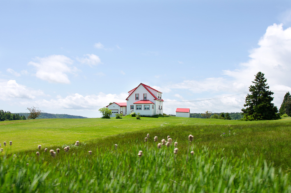 The saturated colors of the landscape give a surreal air to an isolated farmhouse.