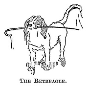 The Retreagle.