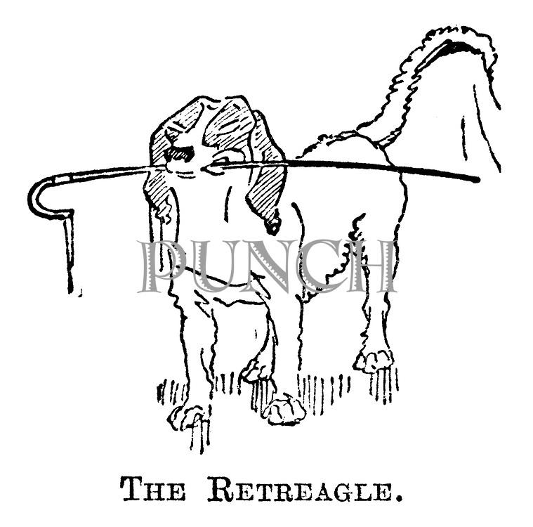 The Retreagle.