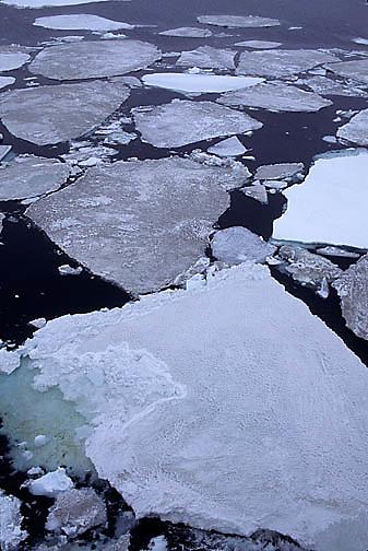 Antarctica, Sea ice on Weddell Sea.