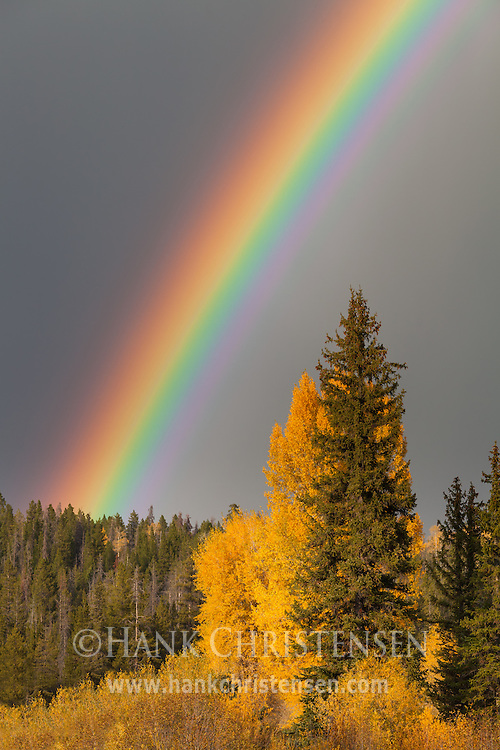 A rainbow forms in the midst of a moving storm, Grand Teton National Park