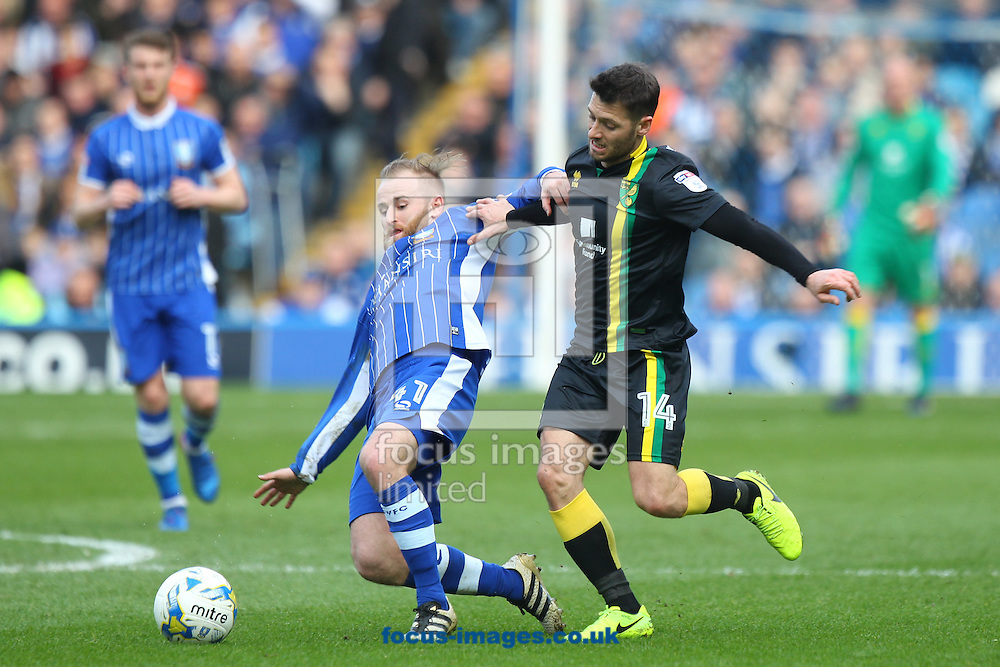 Barry Bannan of Sheffield Wednesday and Wes Hoolahan of Norwich in action during the Sky Bet Championship match at Hillsborough, Sheffield<br /> Picture by Paul Chesterton/Focus Images Ltd +44 7904 640267<br /> 04/03/2017