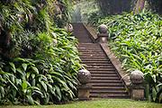 BRIEF GARDEN. Bevis Bawa.<br />The main garden staircase.