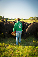 Blubaugh Angus Ranch in Kay County Oklahoma.<br />