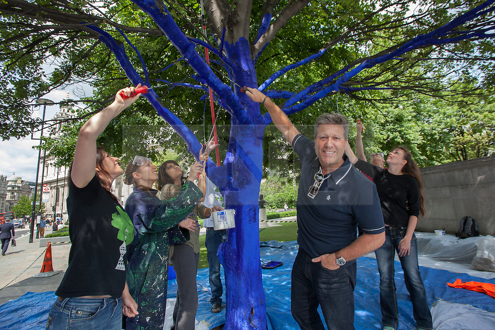 © licensed to London News Pictures. London, UK 25/06/2013. Neil Fox helping Trees for Cities charity and the City of London to create 'The Blue Trees' environmental art installation at Festival Gardens, next to St Paul's Cathedral as part of the annual City of London Festival. Trees in Festival Gardens being coloured 'blue' using a tree safe colourant.  By colouring the trees blue, Trees for Cities want people to stop and 'notice' the trees, which are so often taken for granted. The installation will raise awareness of the significant decline of our city trees over the last decade, and the threats they face from climate change, pests and diseases. Photo credit: Tolga Akmen/LNP