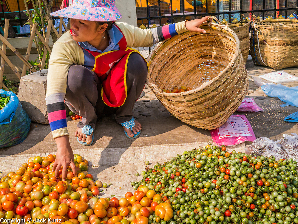 11 MARCH 2013 - LUANG PRABANG, LAOS:  A vendor in the market in Luang Prabang, Laos, sorts tomatoes she has for sale.   PHOTO BY JACK KURTZ