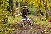 Male competitor in scooter class during the WSA Dryland World Championship 2019 at Firle Country Estate in the South Downs National Park, Lewes, Sussex, United Kingdom on 17 November 2019.