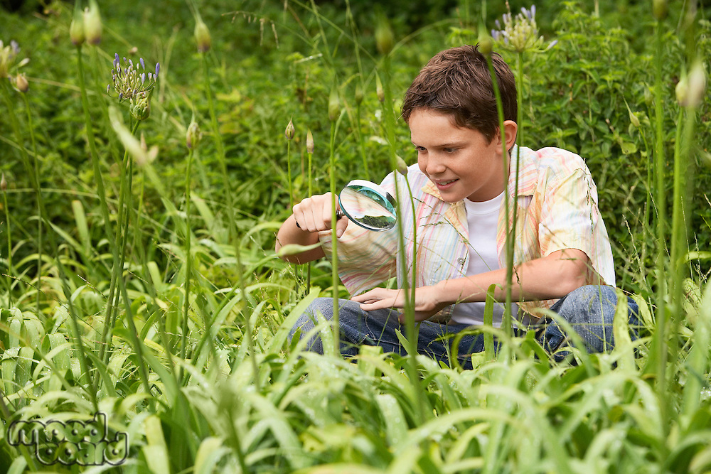 Boy Looking at Insects with Magnifying Glass