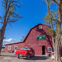 Rovey Goat Dairy, La Grande, Oregon, Steph owner 541-805-9622