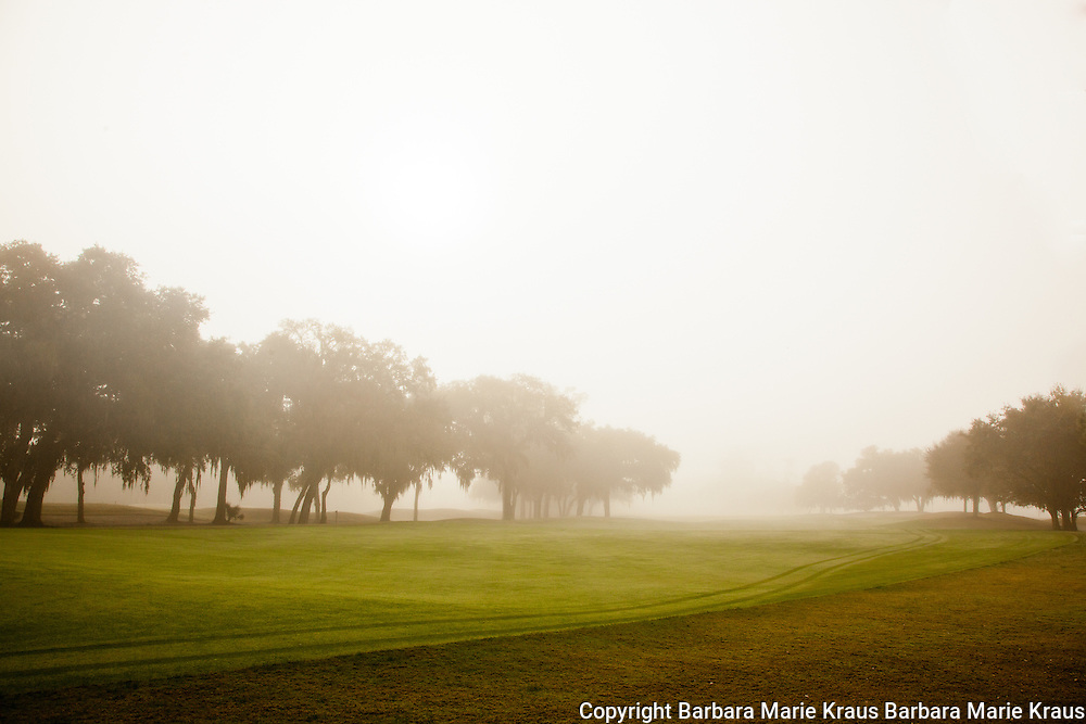 A misty morning on the fairways of the Plantation Golf Course of the Sea Island Golf Resort.  St. Simons Island, Georgia