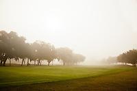 A misty morning on the fairways of the Plantation Golf Course of the Sea Island Golf Resort.  St. Simons Island, Georgia
