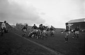 1962 - Wales Rugby team