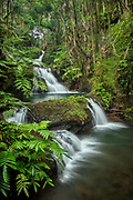 Waterfalls on Onomea Stream, Hawaii Tropical Botanical Garden, Island of Hawaii.