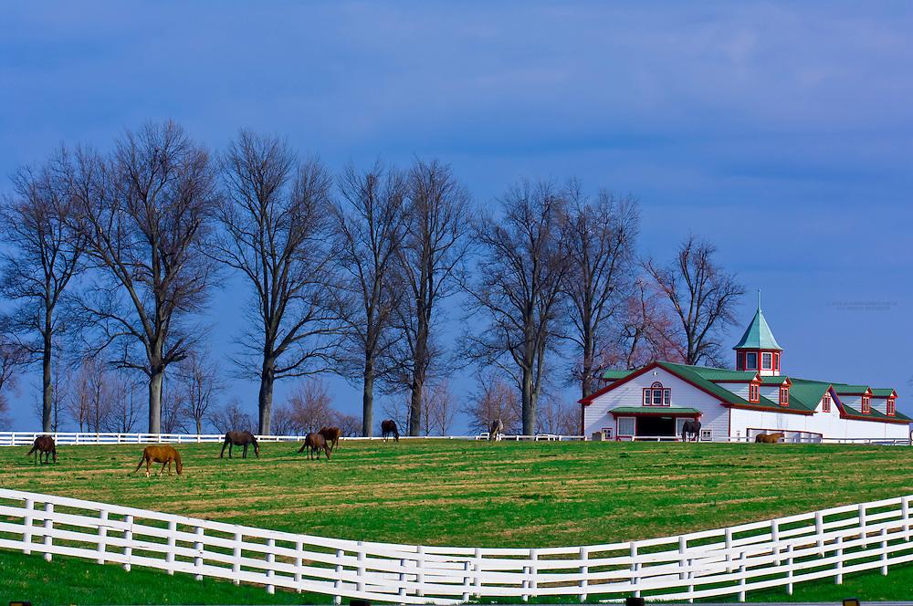 Calumet Farm, Lexington, Kentucky USA