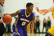 Great Danes guard Evan Singletary (0) drives to the hoop during the men's basketball game between the Albany Great Danes and the Vermont Catamounts at Patrick Gym on Wednesday night January 28, 2015 in Burlington, Vermont. (BRIAN JENKINS, for the Free Press)