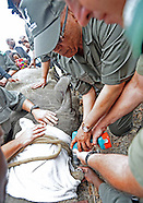 President Zuma Leads Rhino Anti-Poaching Day