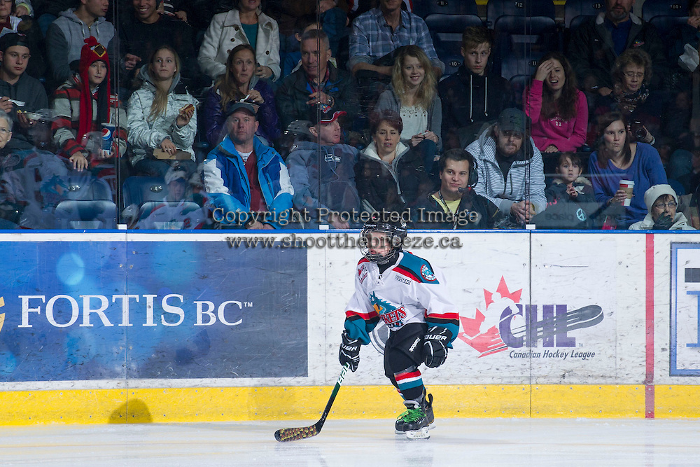 KELOWNA, CANADA - JANUARY 2:   Victoria Royals at the Kelowna Rockets on January 2, 2013 at Prospera Place in Kelowna, British Columbia, Canada (Photo by Marissa Baecker/Shoot the Breeze) *** Local Caption ***